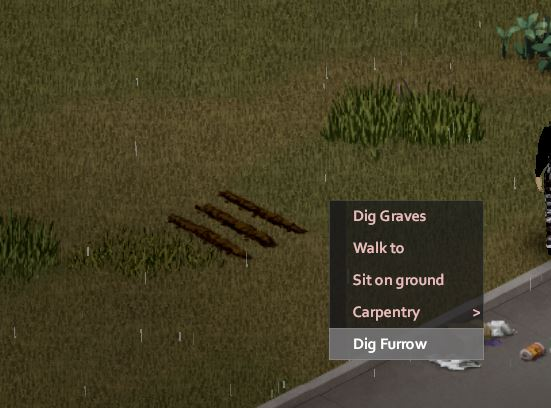Dig Furrow in Project Zomboid to farm and grow plants