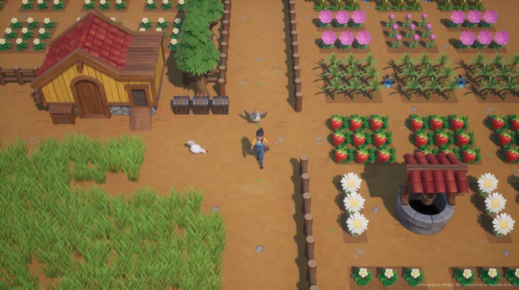 growing crops and raising animals in coral island