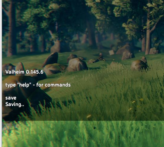 Manually save the game in valheim with the 'save' command