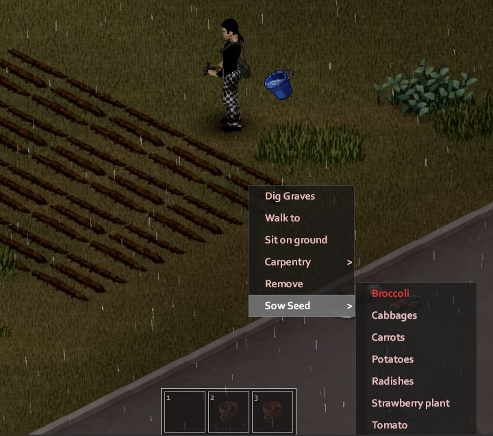 Sow seeds to grow vegetables and fruit in project zomboid