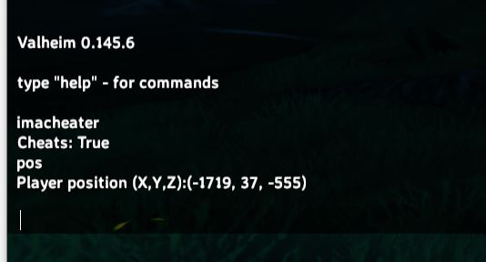 using the pos command to find out your position and coordinates in valheim