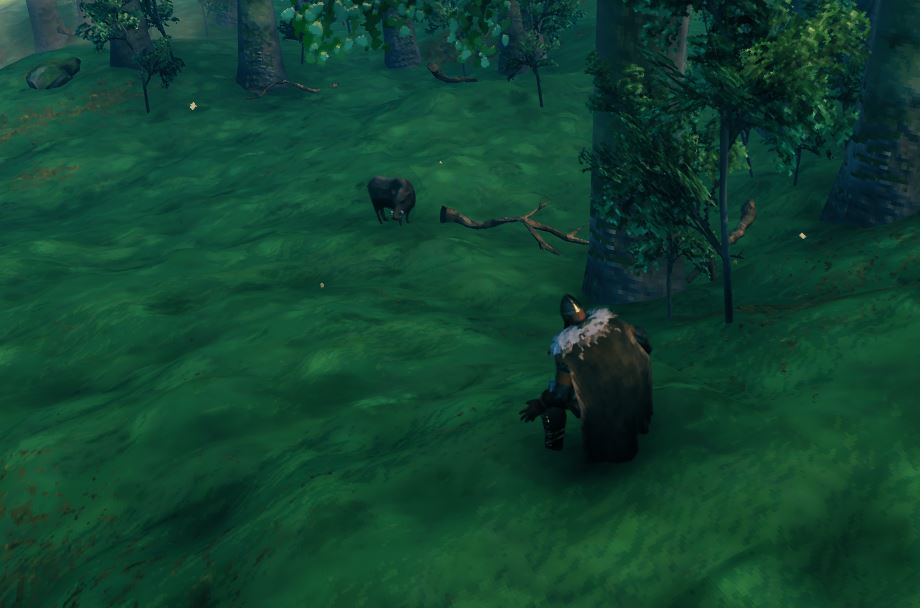a player sneaking up on a boar which cannot detect the player even from their scent