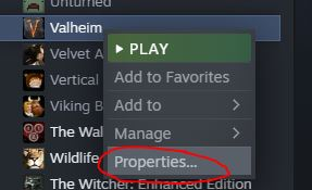 add console commands in Valheim through the properties menu