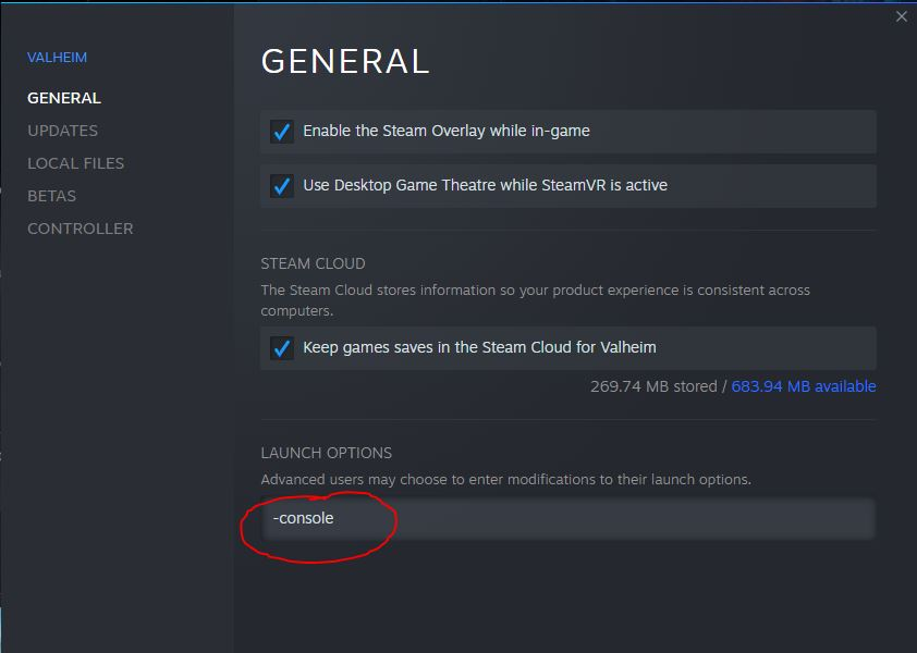 add -console to Valheim to enable cheats