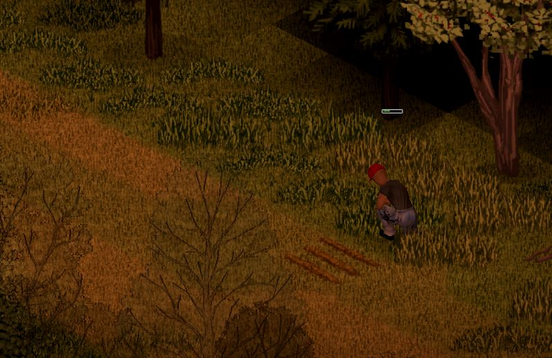 Getting worms from digging farm furrows in Project Zomboid